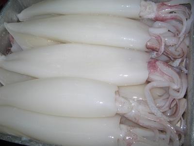 Giải độc gan với mực ống