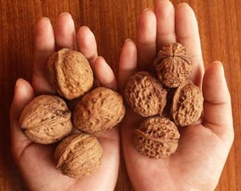 Một số bài thuốc trị táo bón